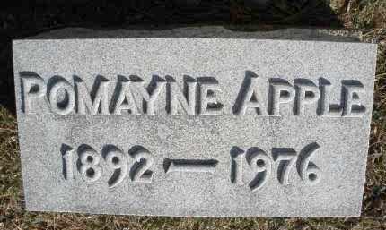 APPLE, POMAYNE - Montgomery County, Ohio   POMAYNE APPLE - Ohio Gravestone Photos