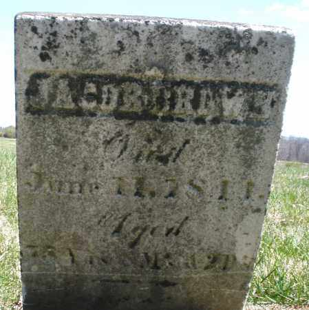 BROWN, JACOB - Montgomery County, Ohio | JACOB BROWN - Ohio Gravestone Photos