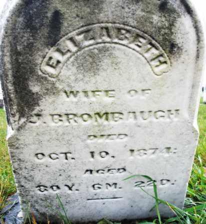 BRUMBAUGH, ELIZABETH - Montgomery County, Ohio | ELIZABETH BRUMBAUGH - Ohio Gravestone Photos