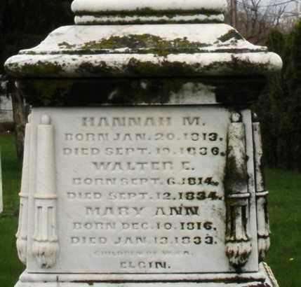 ELGIN, MARY ANN - Montgomery County, Ohio   MARY ANN ELGIN - Ohio Gravestone Photos