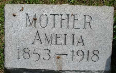 LANDIS, AMELIA - Montgomery County, Ohio   AMELIA LANDIS - Ohio Gravestone Photos