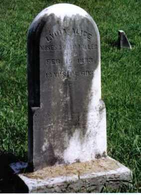 MILLER, LYDIA ALICE - Montgomery County, Ohio | LYDIA ALICE MILLER - Ohio Gravestone Photos