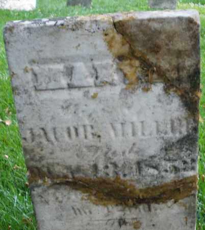 MILLER, MARY - Montgomery County, Ohio   MARY MILLER - Ohio Gravestone Photos