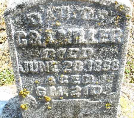 MILLER, MARY C. - Montgomery County, Ohio | MARY C. MILLER - Ohio Gravestone Photos