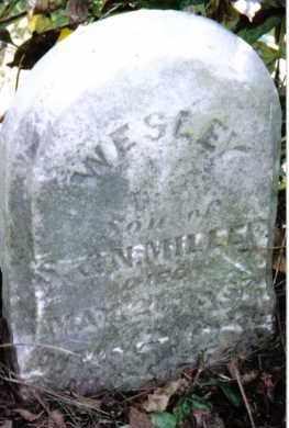 MILLER, WESLEY - Montgomery County, Ohio | WESLEY MILLER - Ohio Gravestone Photos