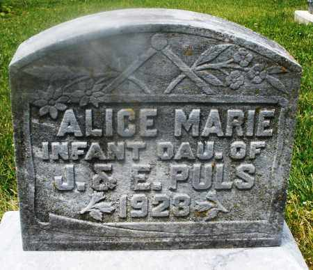 PULS, ALICE MARIE - Montgomery County, Ohio | ALICE MARIE PULS - Ohio Gravestone Photos