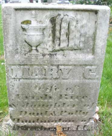RICE, MARY G. - Montgomery County, Ohio   MARY G. RICE - Ohio Gravestone Photos