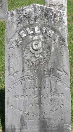 STUTESMAN, ELLIS - Montgomery County, Ohio | ELLIS STUTESMAN - Ohio Gravestone Photos