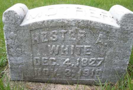 WHITE, HESTER A. - Montgomery County, Ohio   HESTER A. WHITE - Ohio Gravestone Photos