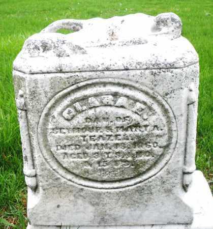 YEAZEL, CLARA E. - Montgomery County, Ohio   CLARA E. YEAZEL - Ohio Gravestone Photos