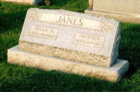 BALDING JANES, DELLA - Morgan County, Ohio | DELLA BALDING JANES - Ohio Gravestone Photos