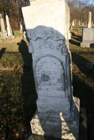 APT, JOHN - Morrow County, Ohio | JOHN APT - Ohio Gravestone Photos
