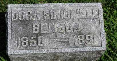 SCHOFIELD BENSON, DORA - Morrow County, Ohio | DORA SCHOFIELD BENSON - Ohio Gravestone Photos