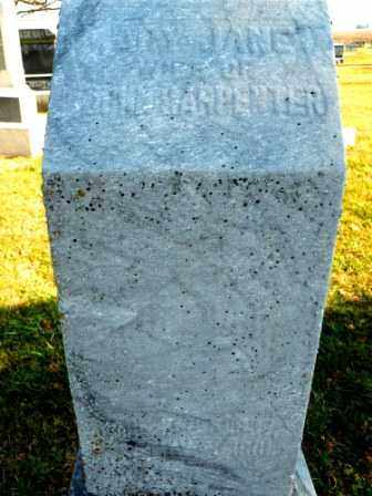 CARPENTER, MARY JANE - Morrow County, Ohio | MARY JANE CARPENTER - Ohio Gravestone Photos