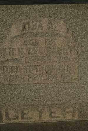 GEYER, ALVA A - Morrow County, Ohio | ALVA A GEYER - Ohio Gravestone Photos
