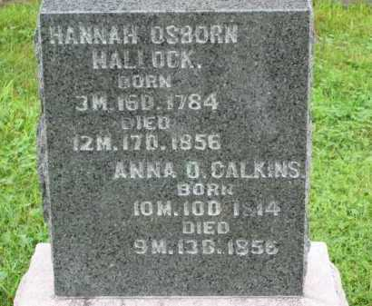 CALKINS, ANNA  O. - Morrow County, Ohio | ANNA  O. CALKINS - Ohio Gravestone Photos