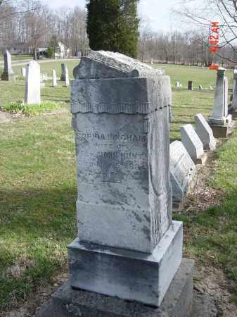 HUNT, SOPHIA - Morrow County, Ohio | SOPHIA HUNT - Ohio Gravestone Photos