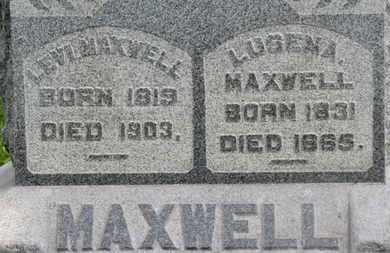 MAXWELL, LUSENA - Morrow County, Ohio | LUSENA MAXWELL - Ohio Gravestone Photos