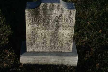 MONTGOMERY, NELSON - Morrow County, Ohio | NELSON MONTGOMERY - Ohio Gravestone Photos