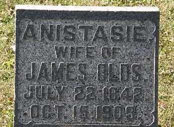 OLDS, ANISTASIE - Morrow County, Ohio | ANISTASIE OLDS - Ohio Gravestone Photos