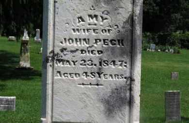 PECK, AMY - Morrow County, Ohio | AMY PECK - Ohio Gravestone Photos