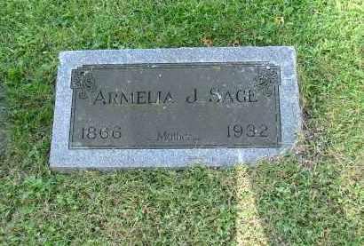 FARRINGTON SAGE, ARMELIA - Morrow County, Ohio | ARMELIA FARRINGTON SAGE - Ohio Gravestone Photos