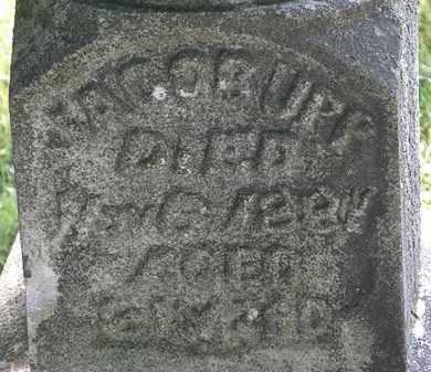 UPP, JACOB - Morrow County, Ohio   JACOB UPP - Ohio Gravestone Photos