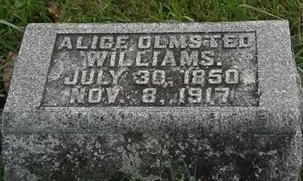 WILLIAMS, ALICE - Morrow County, Ohio | ALICE WILLIAMS - Ohio Gravestone Photos