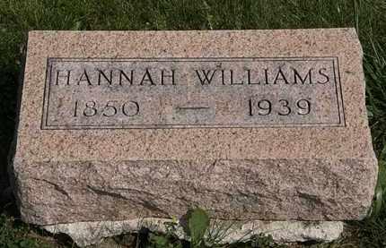 WILLIAMS, HANNAH - Morrow County, Ohio | HANNAH WILLIAMS - Ohio Gravestone Photos