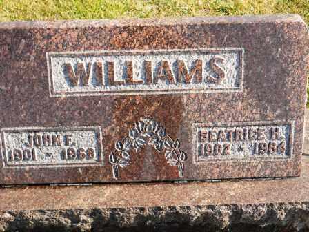 WILLIAMS, JOHN F - Morrow County, Ohio | JOHN F WILLIAMS - Ohio Gravestone Photos