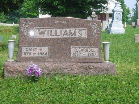 WILLIAMS, DAISY - Morrow County, Ohio | DAISY WILLIAMS - Ohio Gravestone Photos