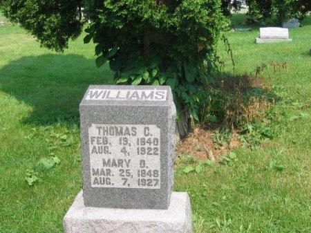 WILLIAMS, MARY - Morrow County, Ohio | MARY WILLIAMS - Ohio Gravestone Photos