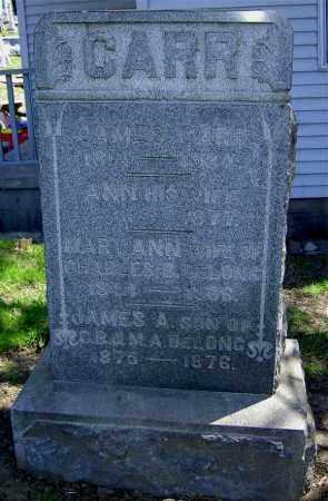 CARR, ANN - Muskingum County, Ohio   ANN CARR - Ohio Gravestone Photos