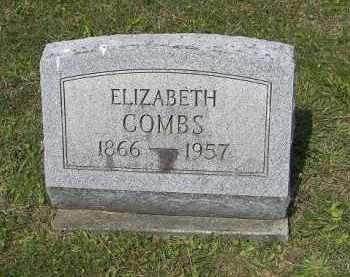 COMBS, ELIZABETH - Perry County, Ohio   ELIZABETH COMBS - Ohio Gravestone Photos