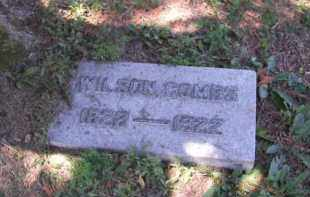 COMBS, WILSON - Perry County, Ohio   WILSON COMBS - Ohio Gravestone Photos