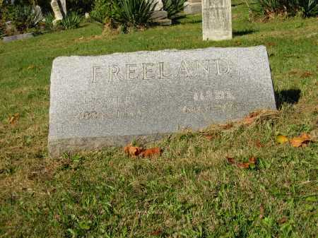 FREELAND, HOMER - Perry County, Ohio | HOMER FREELAND - Ohio Gravestone Photos
