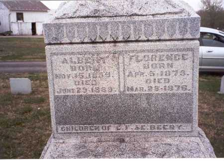 BEERY, ALBERT - Pickaway County, Ohio | ALBERT BEERY - Ohio Gravestone Photos