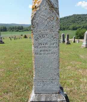 ANDERSON, MARY M. - Pike County, Ohio | MARY M. ANDERSON - Ohio Gravestone Photos