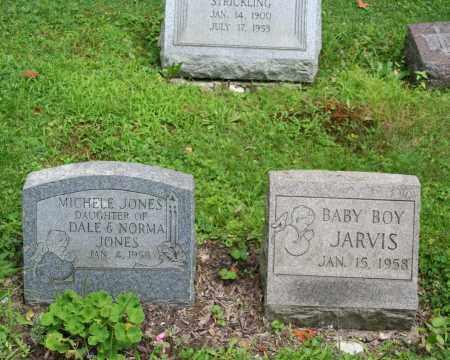JONES, MICHELE - Portage County, Ohio   MICHELE JONES - Ohio Gravestone Photos