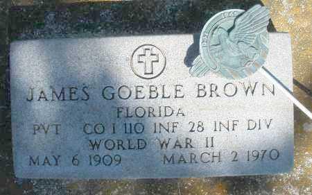 BROWN, JAMES GOEBLE - Preble County, Ohio | JAMES GOEBLE BROWN - Ohio Gravestone Photos