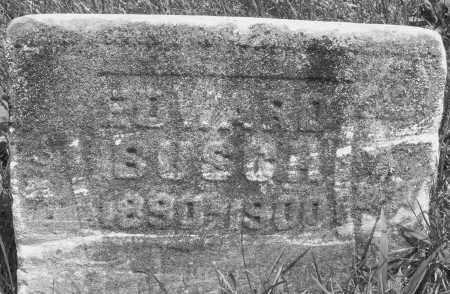 BUSCH, EDWARD - Preble County, Ohio | EDWARD BUSCH - Ohio Gravestone Photos