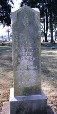 GLANDER, NANCY - Preble County, Ohio   NANCY GLANDER - Ohio Gravestone Photos