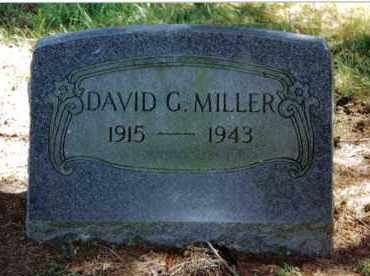 MILLER, DAVID G. - Preble County, Ohio   DAVID G. MILLER - Ohio Gravestone Photos