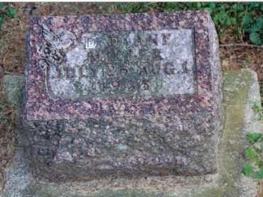 MILLER, D. DIANE - Preble County, Ohio   D. DIANE MILLER - Ohio Gravestone Photos