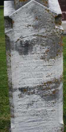 MILLER, ELSIE - Preble County, Ohio   ELSIE MILLER - Ohio Gravestone Photos