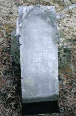 MILLER, HANNAH S. - Preble County, Ohio | HANNAH S. MILLER - Ohio Gravestone Photos