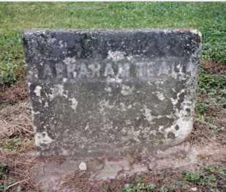 TEAL, ABRAHAM - Preble County, Ohio | ABRAHAM TEAL - Ohio Gravestone Photos