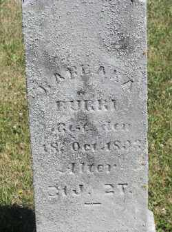 BURRI, BARBARA - Putnam County, Ohio | BARBARA BURRI - Ohio Gravestone Photos