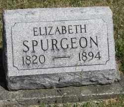 SPURGEON, ELIZABETH - Putnam County, Ohio | ELIZABETH SPURGEON - Ohio Gravestone Photos