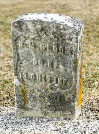 BLOOM, D M - Richland County, Ohio   D M BLOOM - Ohio Gravestone Photos